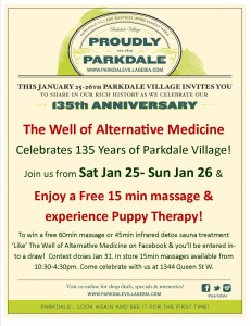 Parkdale Anniversary Posters - The Well - Jan 2014